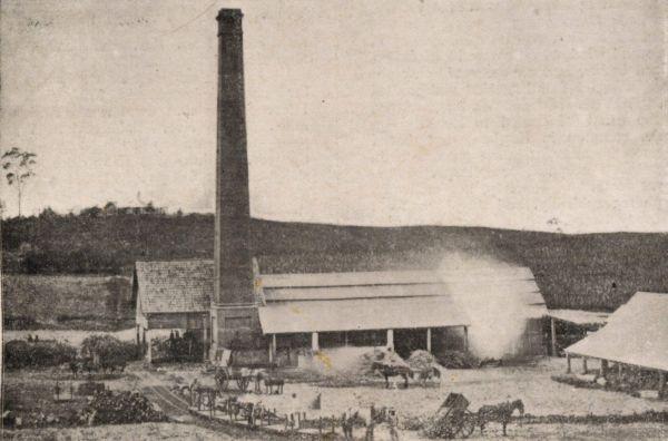 The cedars sugar mill 1873 1886 for The cedar mill